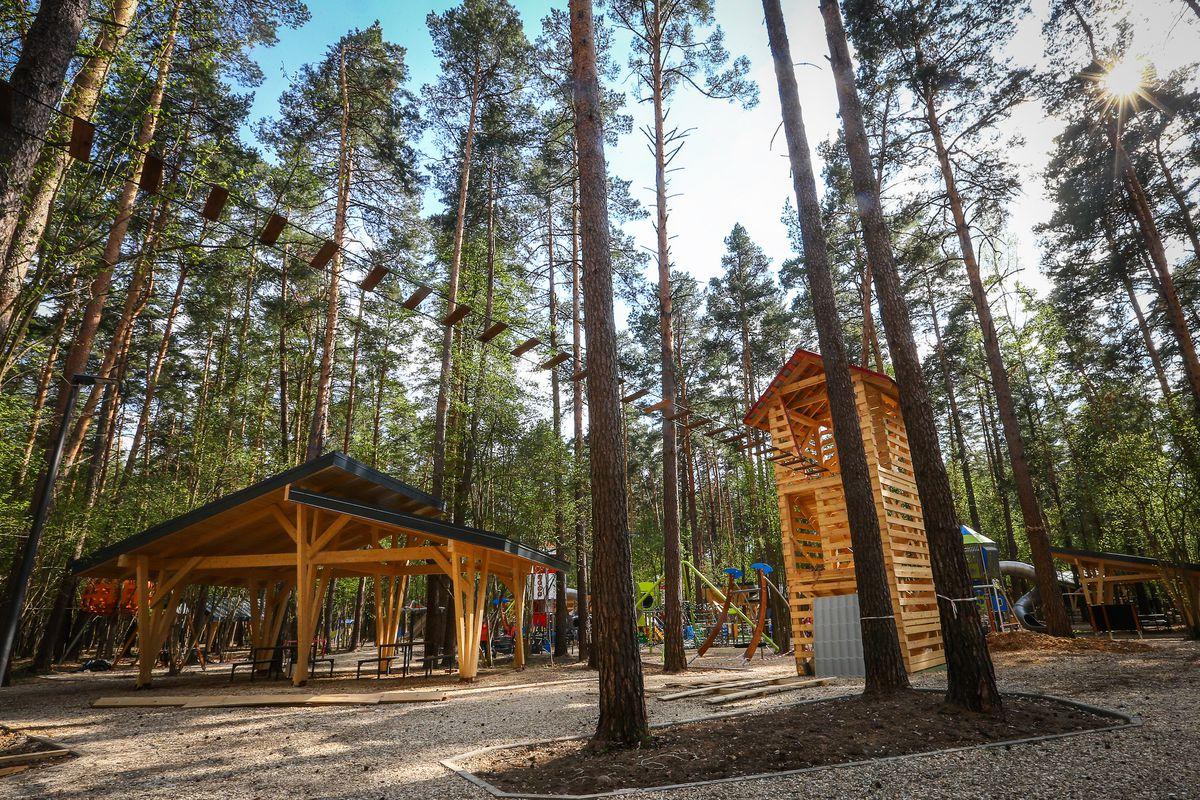 Андрей Воробьев губернатор московской области - Проверка хода строительства детского парка в «Раздорах»