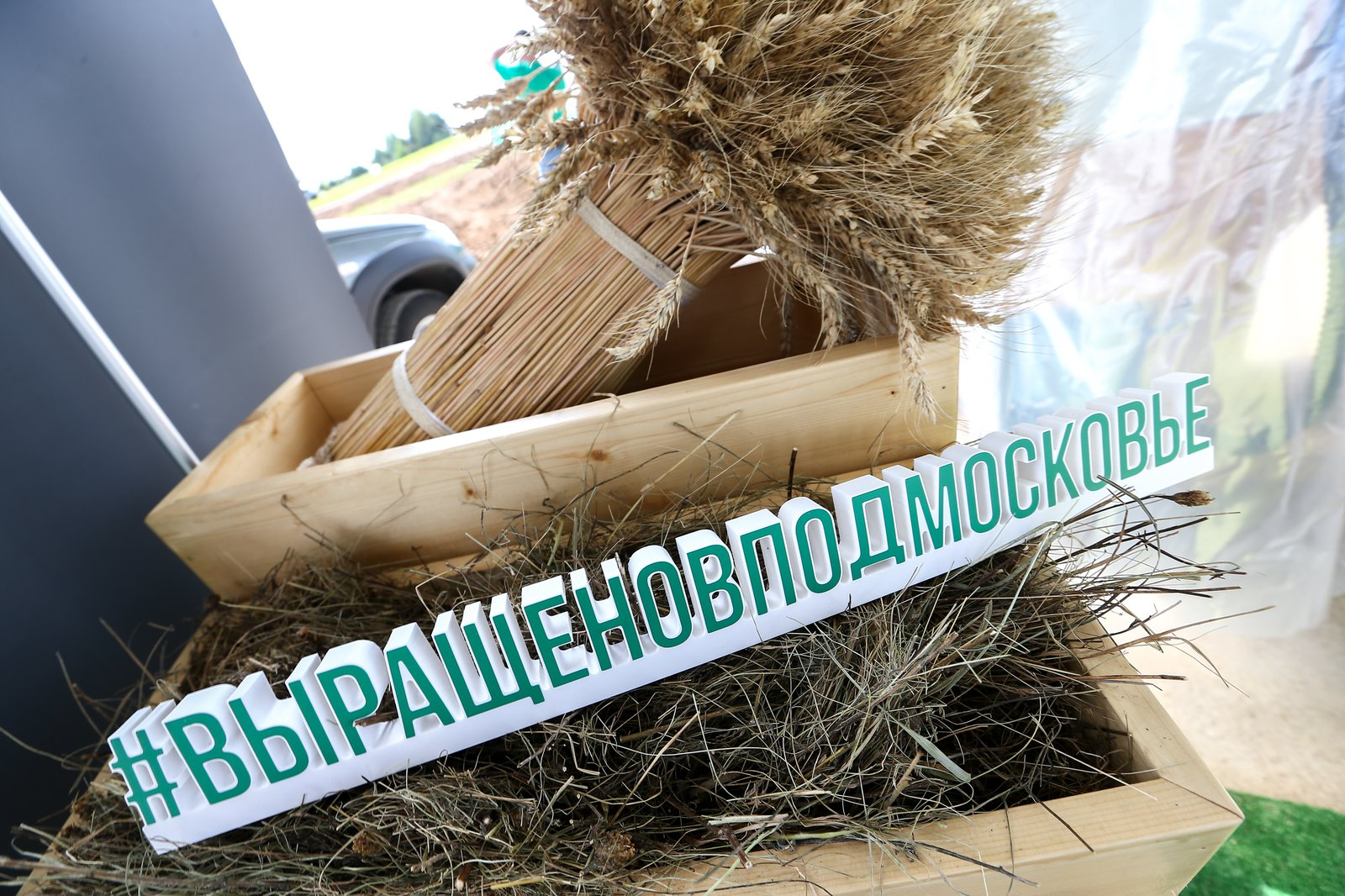 Андрей Воробьев губернатор московской области - Подмосковный пармезан и Нейромонах Феофан: как в области готовятся к сырному фестивалю